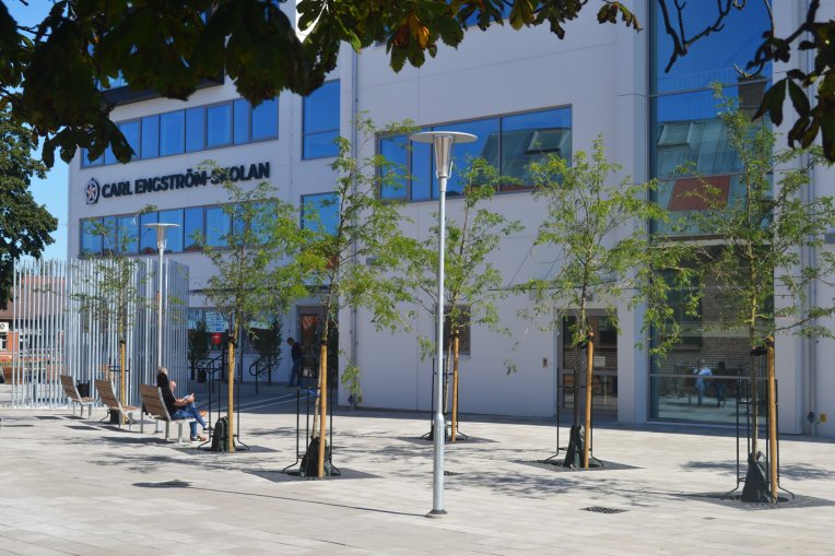 Foto på Carl Engström-skolans fasad med träd i förgrunden.