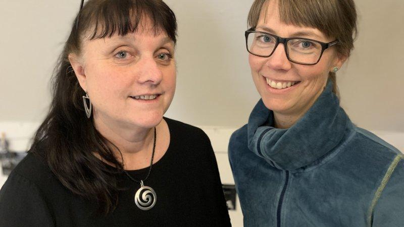 Åsa Wallin Pinhao och Christel Nilsson Ringdahl
