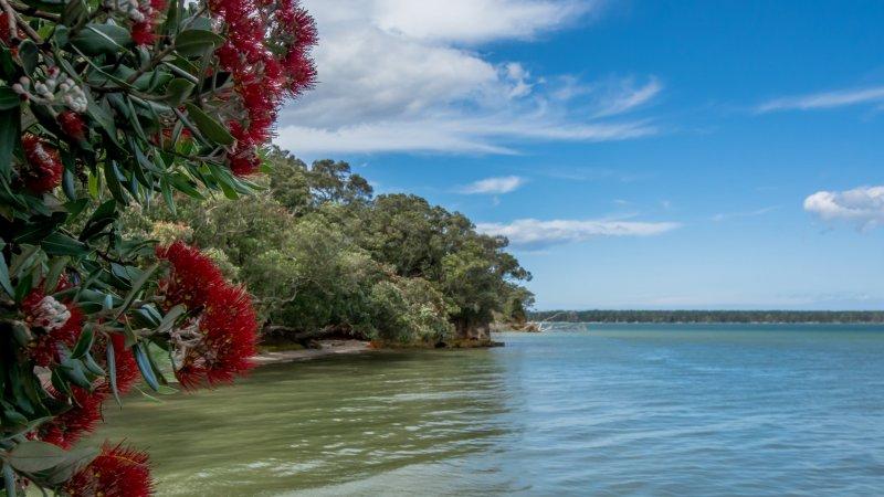 Bildvisning – En rundresa på Nya Zeeland