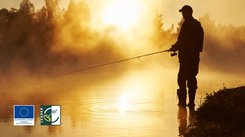 Webbinarium: Hur skapar vi något större av vår småskaliga fisketurism?