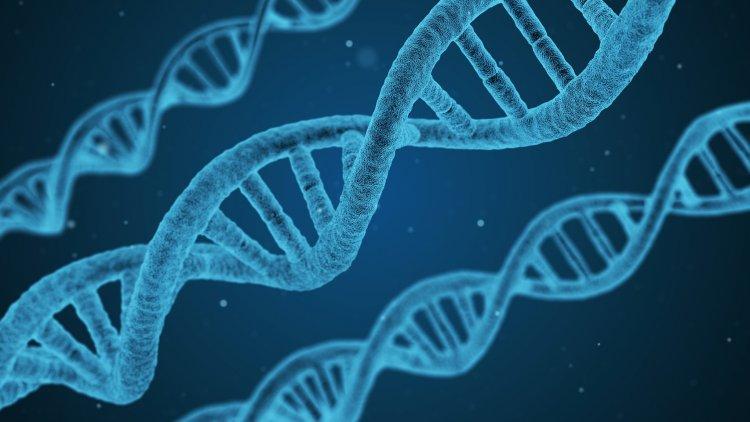 Föreläsning: Hur påverkar dina gener ditt liv?