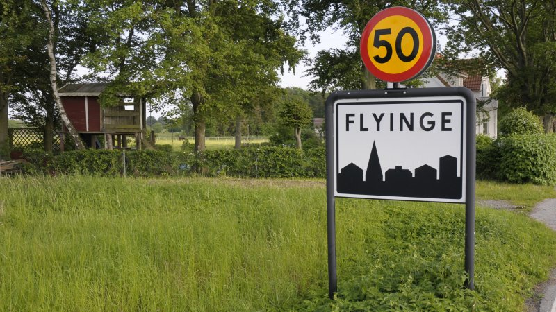 Flyinge