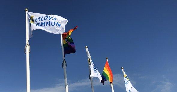 Kommunflaggor och regnbågsflaggor på rad utanför stadshuset.