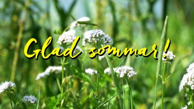 Glad sommar önskar Eslövs kommun!